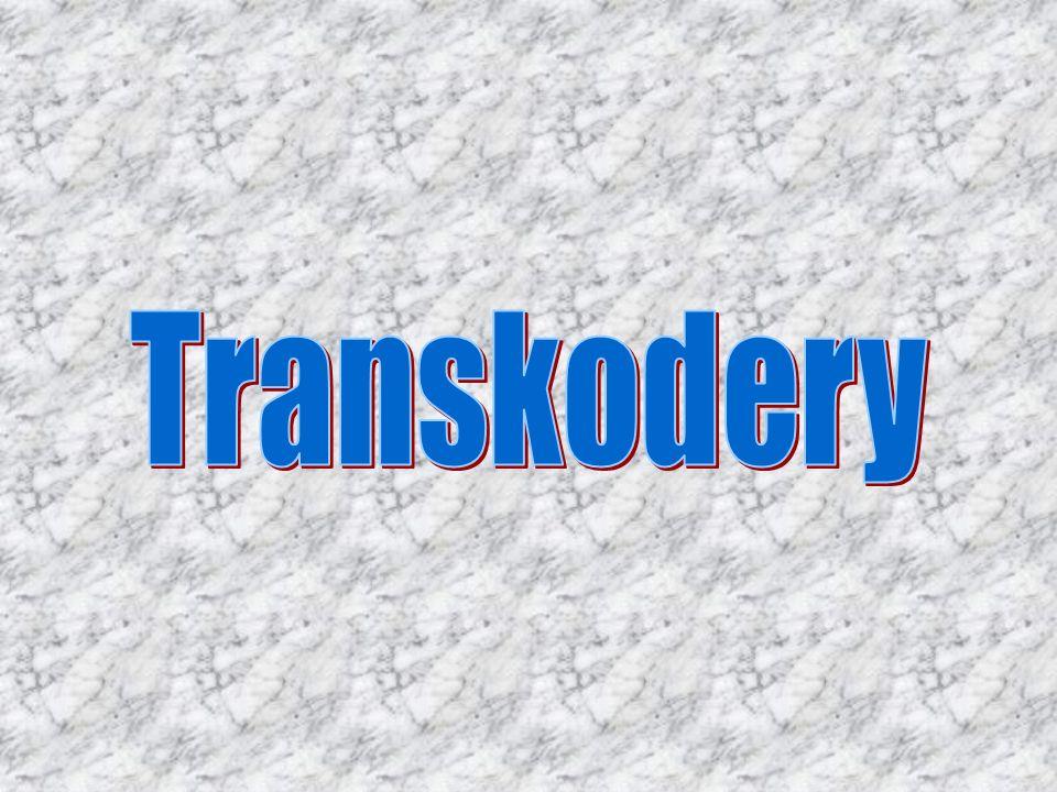 Transkodery