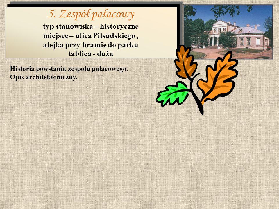 5. Zespół pałacowy typ stanowiska – historyczne