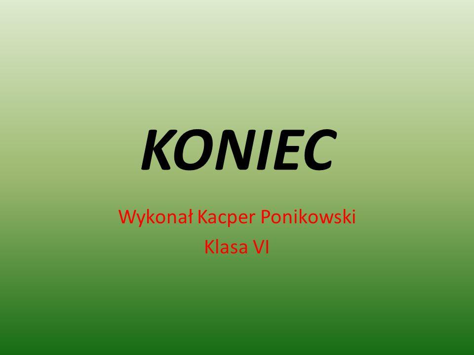 Wykonał Kacper Ponikowski Klasa VI