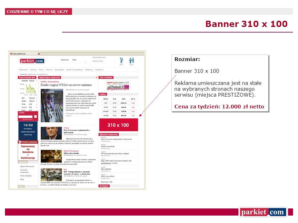 Banner 310 x 100 Rozmiar: Banner 310 x 100