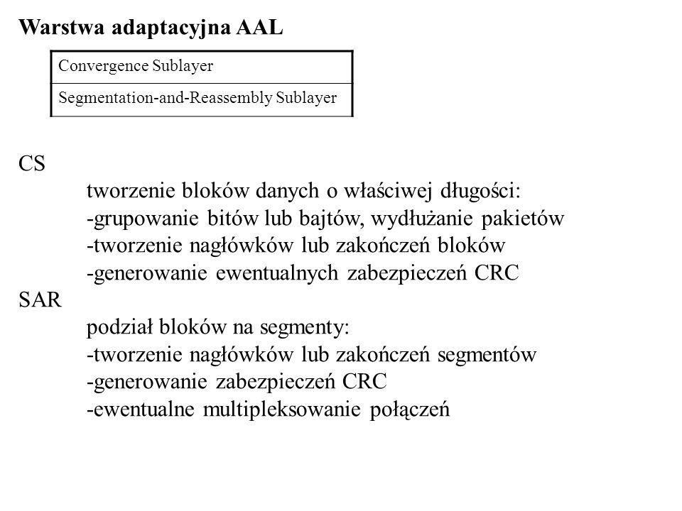 Warstwa adaptacyjna AAL