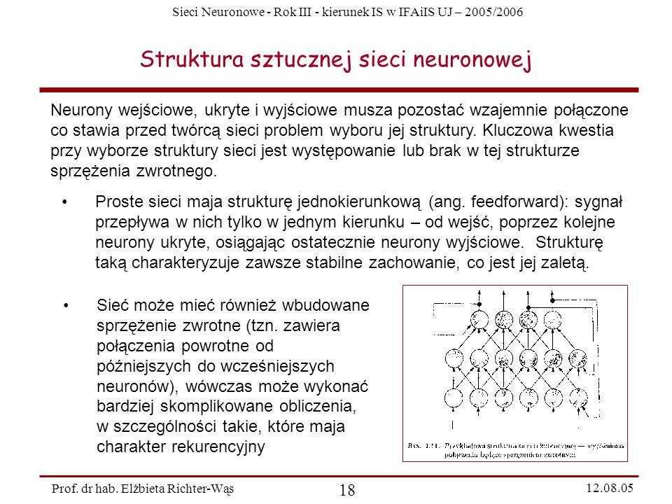 Struktura sztucznej sieci neuronowej