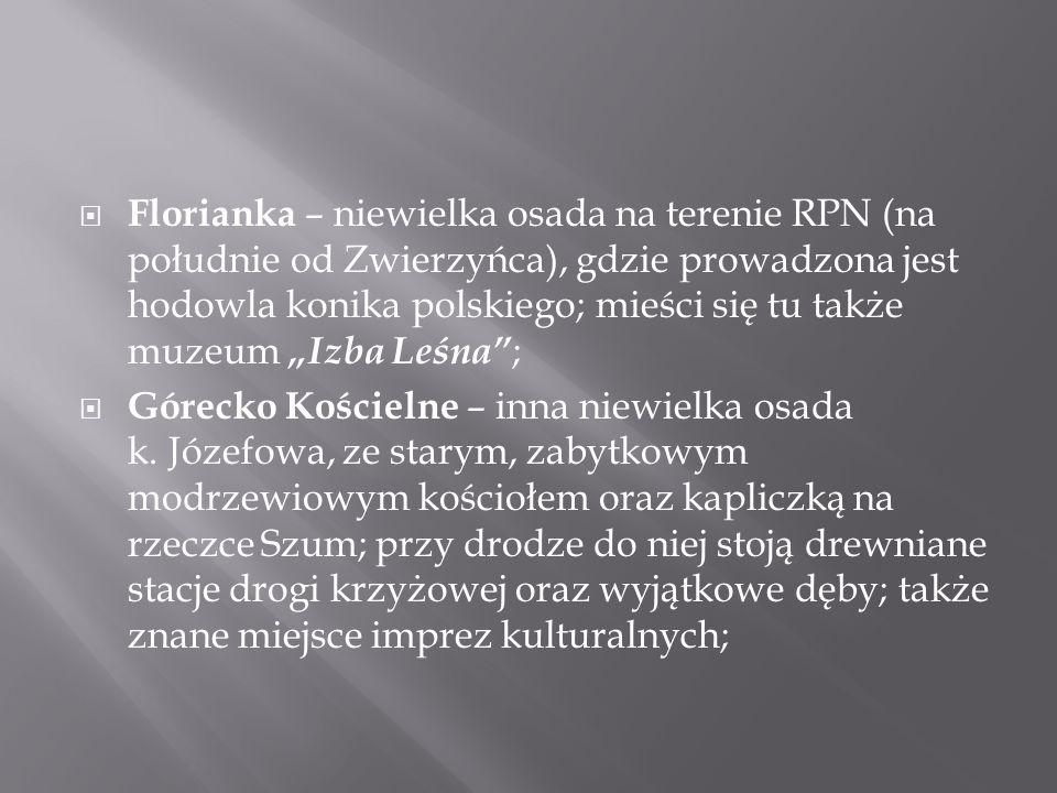 """Florianka – niewielka osada na terenie RPN (na południe od Zwierzyńca), gdzie prowadzona jest hodowla konika polskiego; mieści się tu także muzeum """"Izba Leśna ;"""