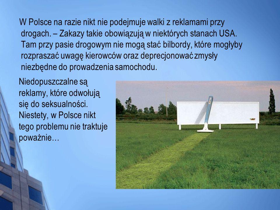 W Polsce na razie nikt nie podejmuje walki z reklamami przy drogach