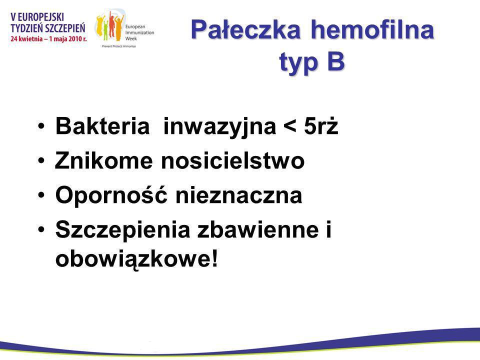 Pałeczka hemofilna typ B
