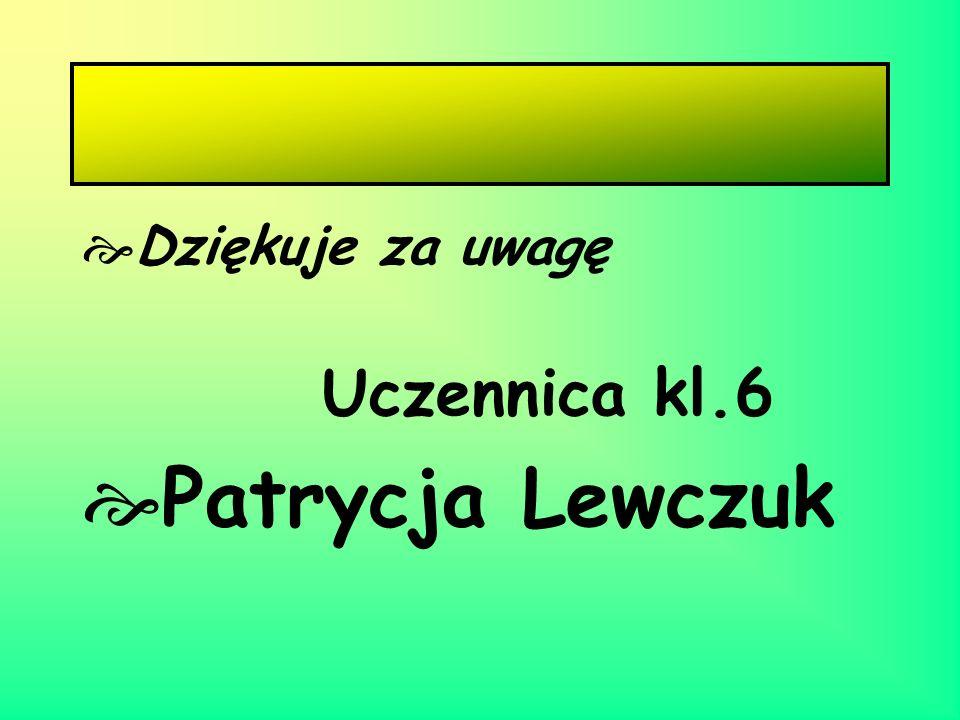 Dziękuje za uwagę Uczennica kl.6 Patrycja Lewczuk