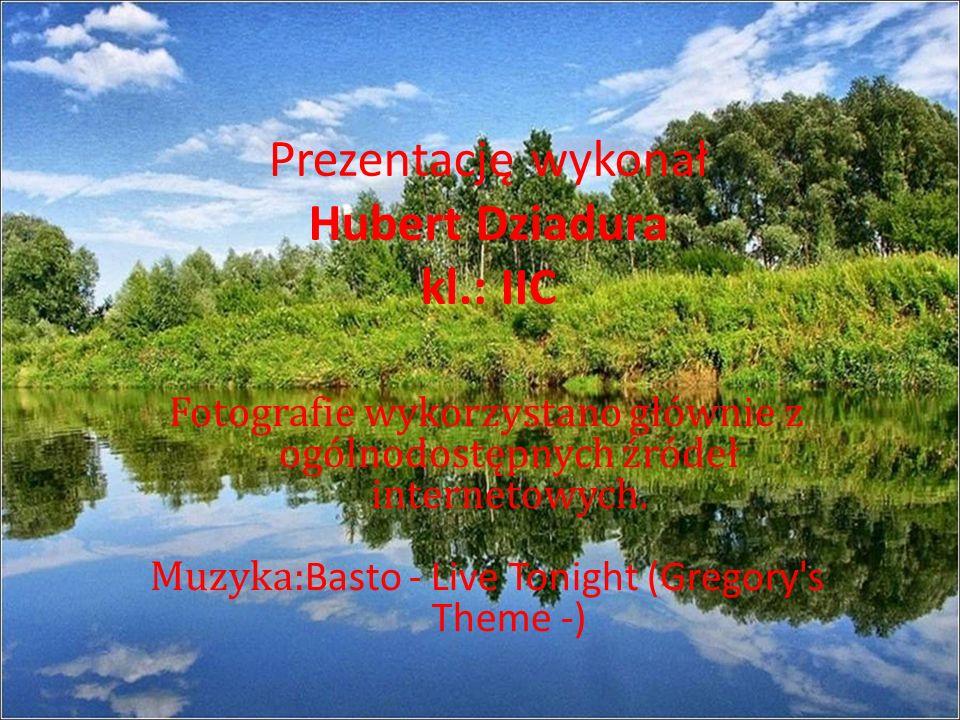 Prezentację wykonał Hubert Dziadura kl.: IIC