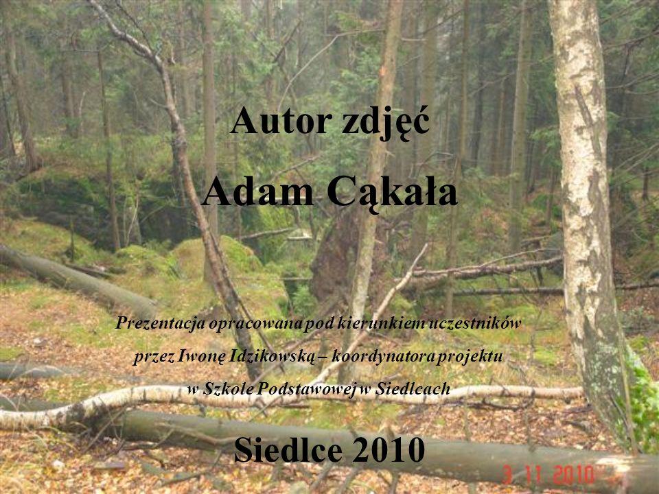 Adam Cąkała Autor zdjęć Siedlce 2010