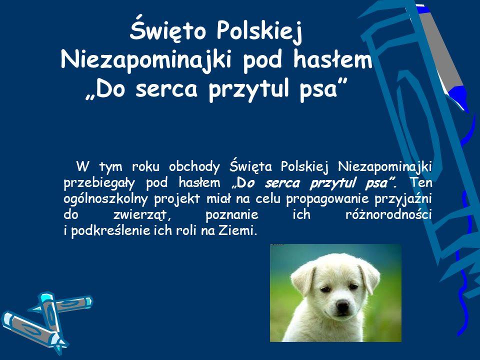 """Święto Polskiej Niezapominajki pod hasłem """"Do serca przytul psa"""