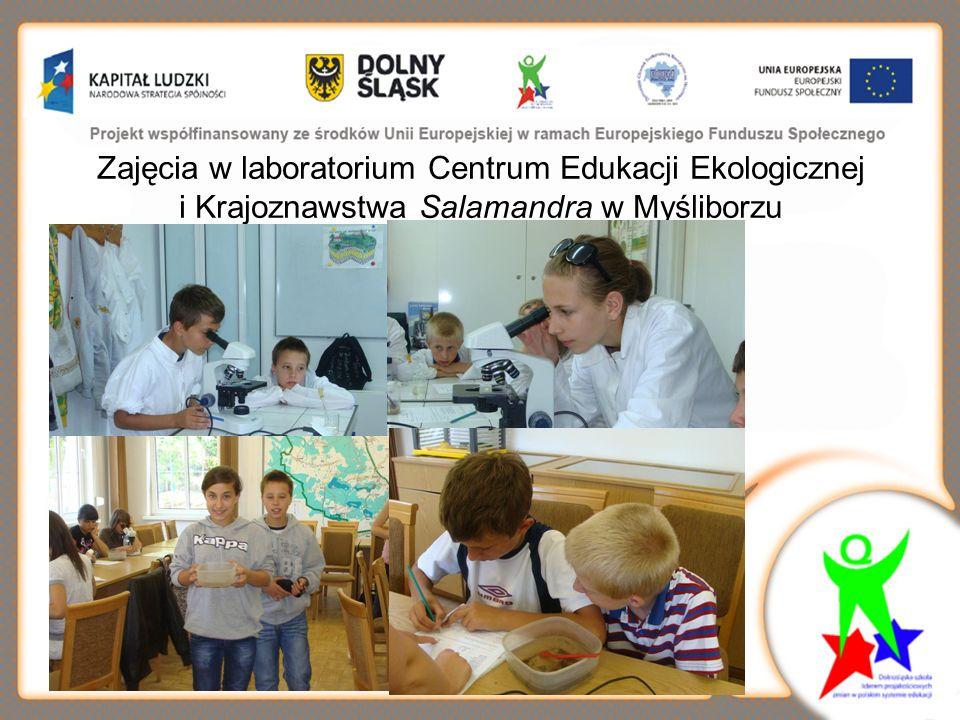 Zajęcia w laboratorium Centrum Edukacji Ekologicznej i Krajoznawstwa Salamandra w Myśliborzu