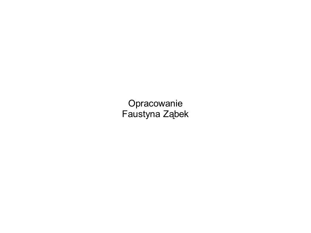 Opracowanie Faustyna Ząbek