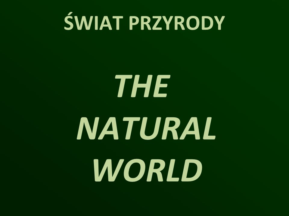 ŚWIAT PRZYRODY THE NATURAL WORLD