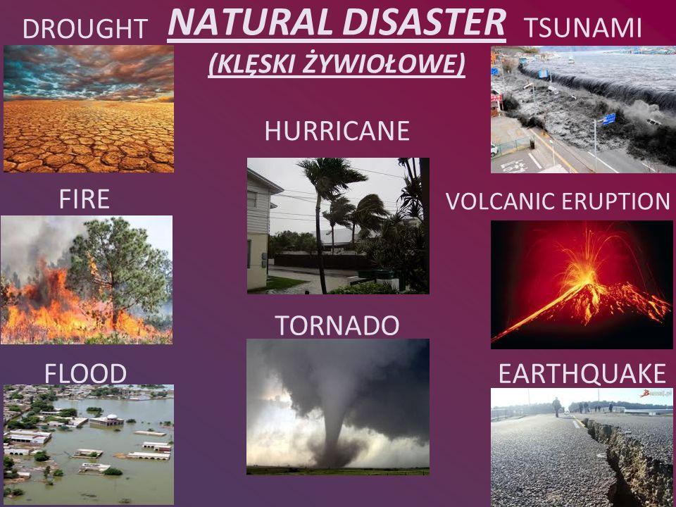 NATURAL DISASTER (KLĘSKI ŻYWIOŁOWE)