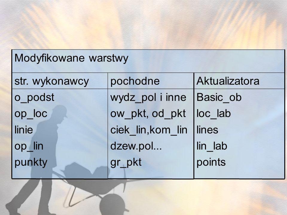 Basic_ob loc_lab. lines. lin_lab. points. Aktualizatora. pochodne. str. wykonawcy. wydz_pol i inne.