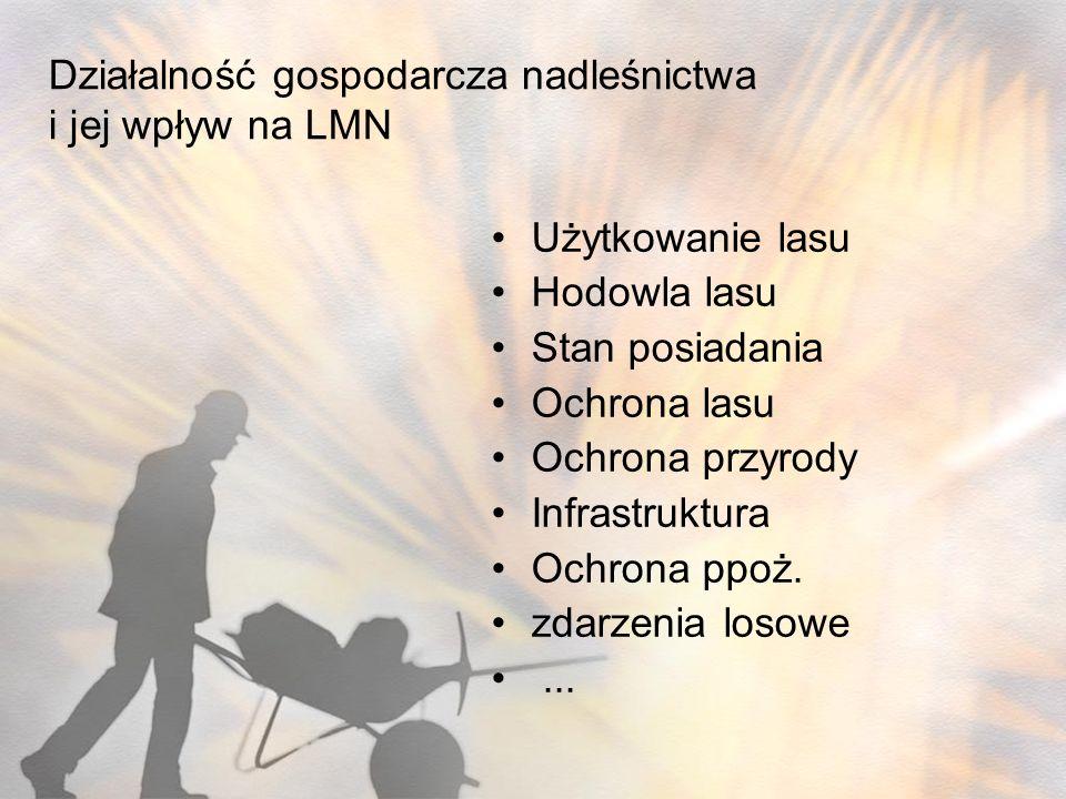 Działalność gospodarcza nadleśnictwa i jej wpływ na LMN