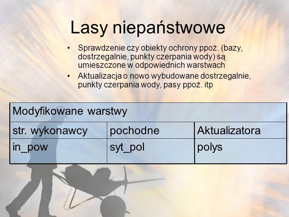 Lasy niepaństwowe polys Aktualizatora pochodne str. wykonawcy syt_pol