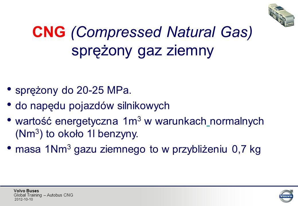 CNG (Compressed Natural Gas) sprężony gaz ziemny