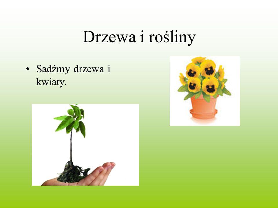 Drzewa i rośliny Sadźmy drzewa i kwiaty.
