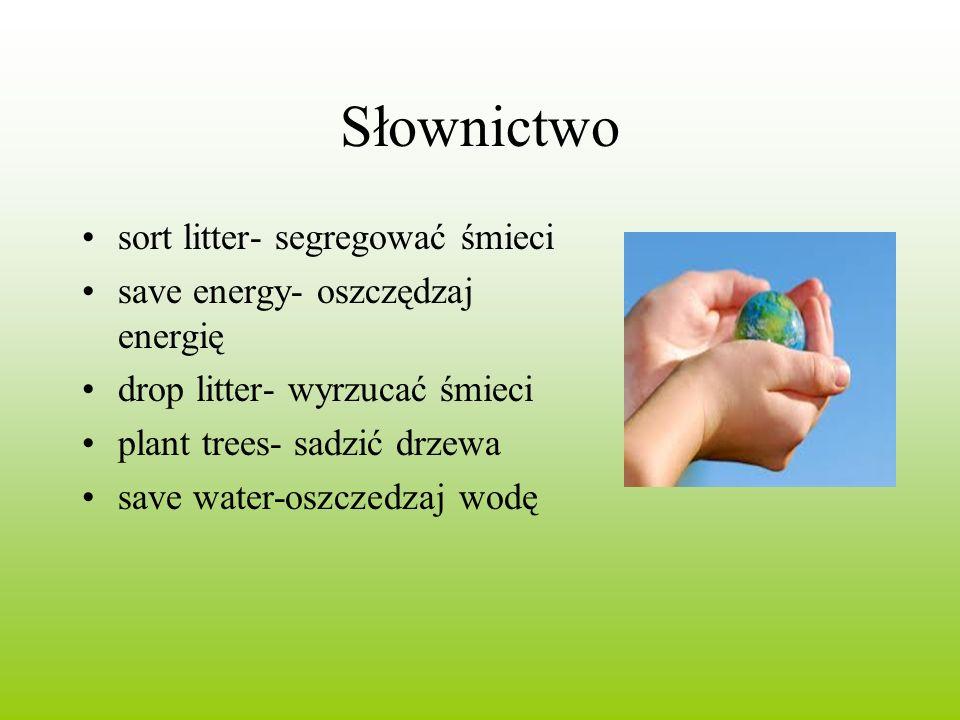 Słownictwo sort litter- segregować śmieci