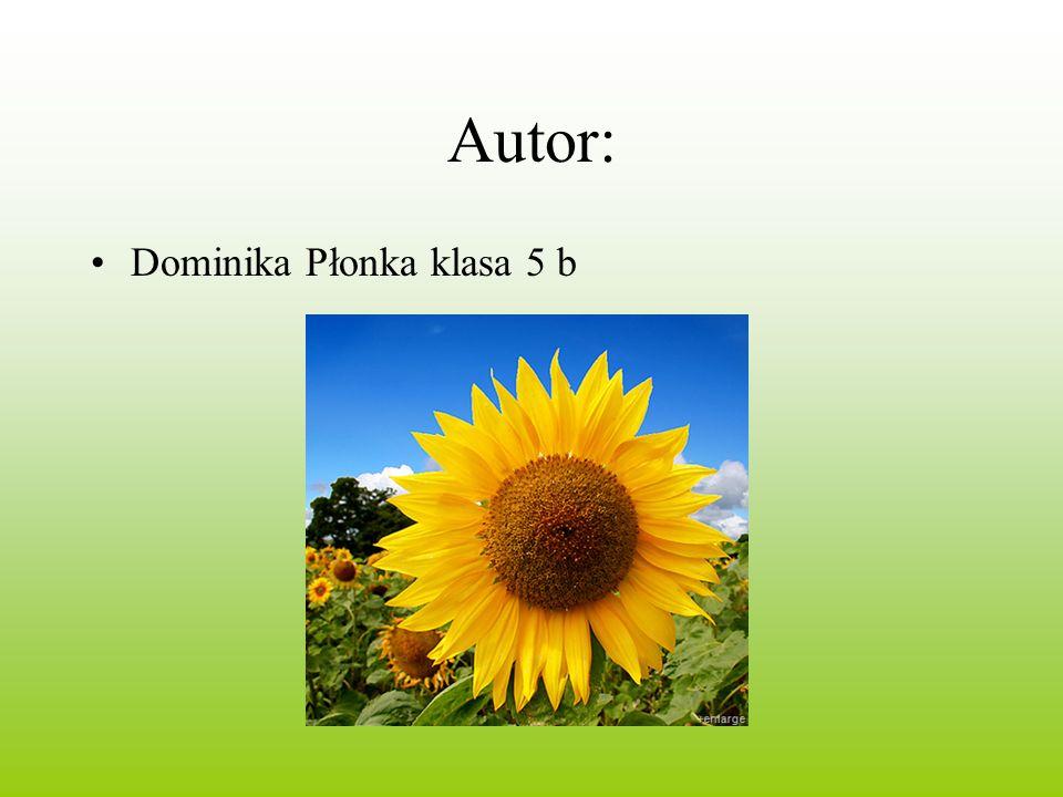 Autor: Dominika Płonka klasa 5 b