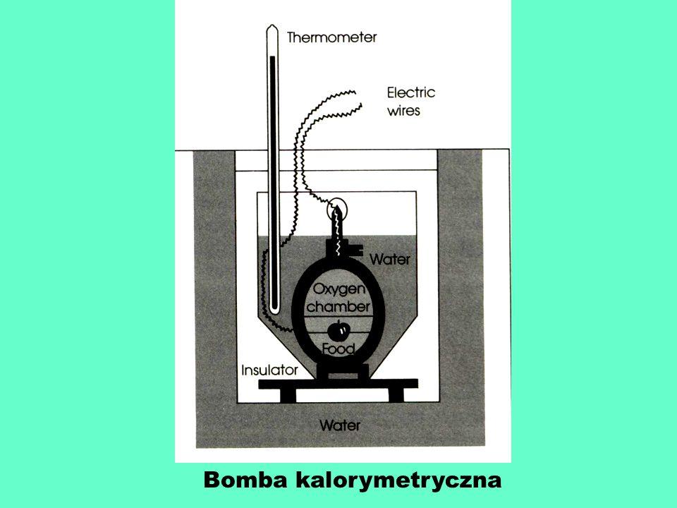 Bomba kalorymetryczna
