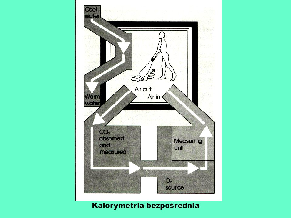 Kalorymetria bezpośrednia