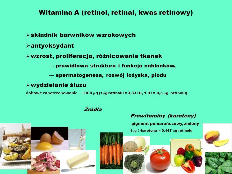 Witamina A (retinol, retinal, kwas retinowy)
