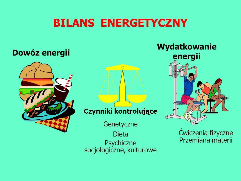 BILANS ENERGETYCZNY Wydatkowanie energii Dowóz energii