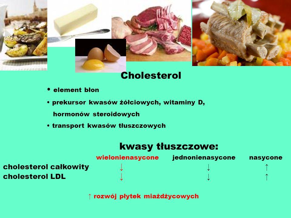 Cholesterol element błon kwasy tłuszczowe: