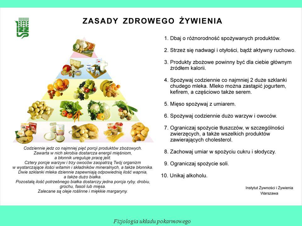 Fizjologia układu pokarmowego