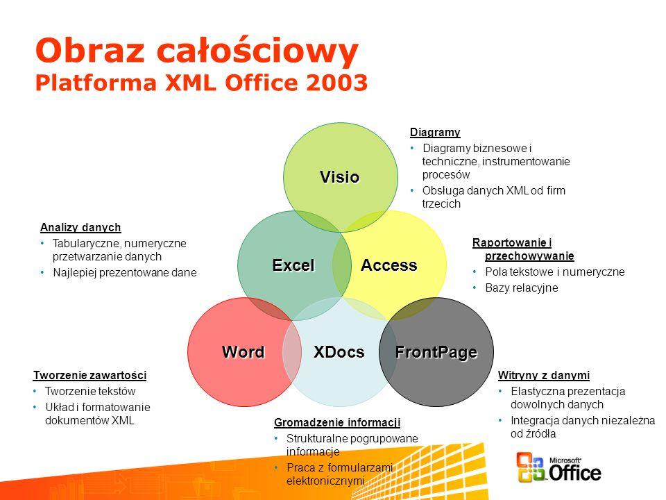 Obraz całościowy Platforma XML Office 2003