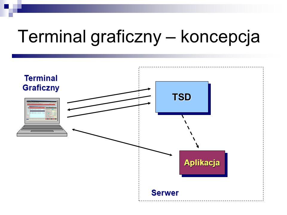 Terminal graficzny – koncepcja