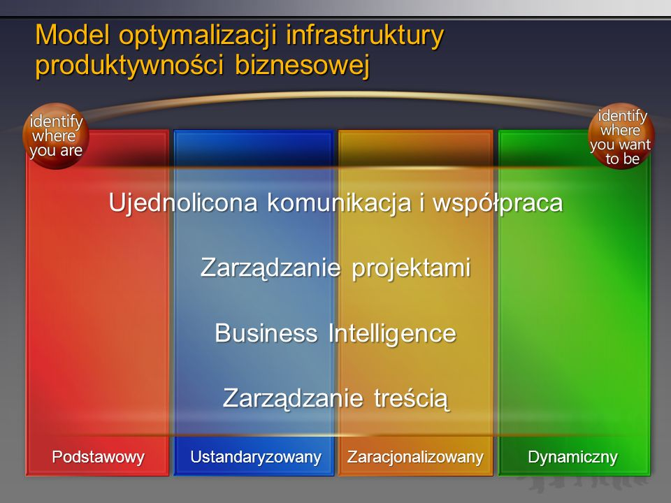 Model optymalizacji infrastruktury produktywności biznesowej