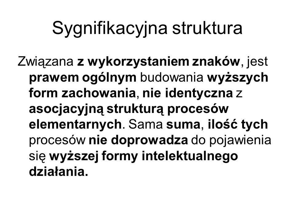 Sygnifikacyjna struktura