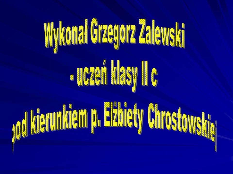 Wykonał Grzegorz Zalewski - uczeń klasy II c