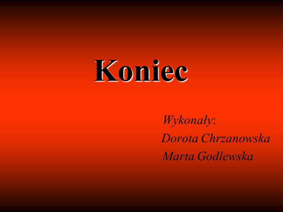Wykonały: Dorota Chrzanowska Marta Godlewska