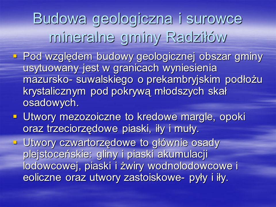 Budowa geologiczna i surowce mineralne gminy Radziłów