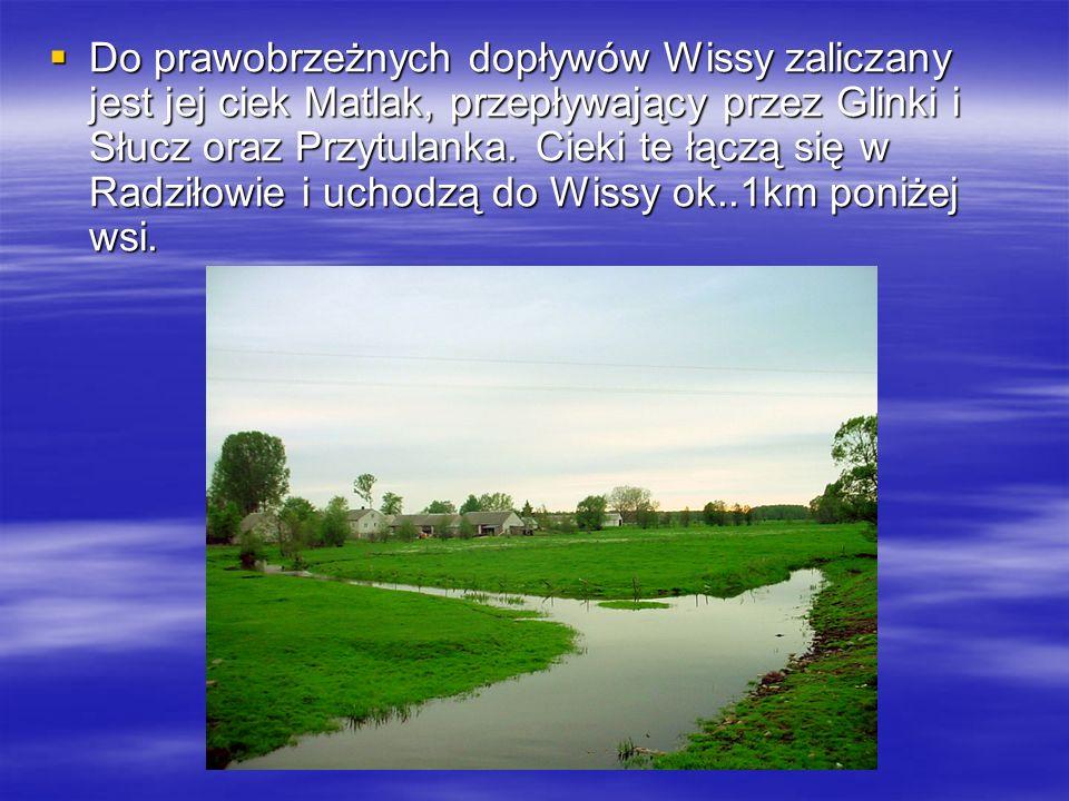 Do prawobrzeżnych dopływów Wissy zaliczany jest jej ciek Matlak, przepływający przez Glinki i Słucz oraz Przytulanka.