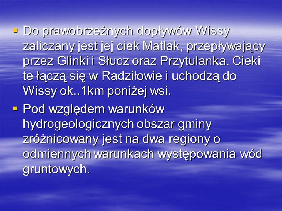 Do prawobrzeżnych dopływów Wissy zaliczany jest jej ciek Matlak, przepływający przez Glinki i Słucz oraz Przytulanka. Cieki te łączą się w Radziłowie i uchodzą do Wissy ok..1km poniżej wsi.