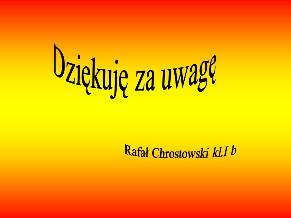 Rafał Chrostowski kl.I b