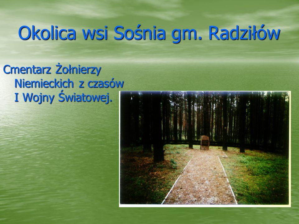 Okolica wsi Sośnia gm. Radziłów