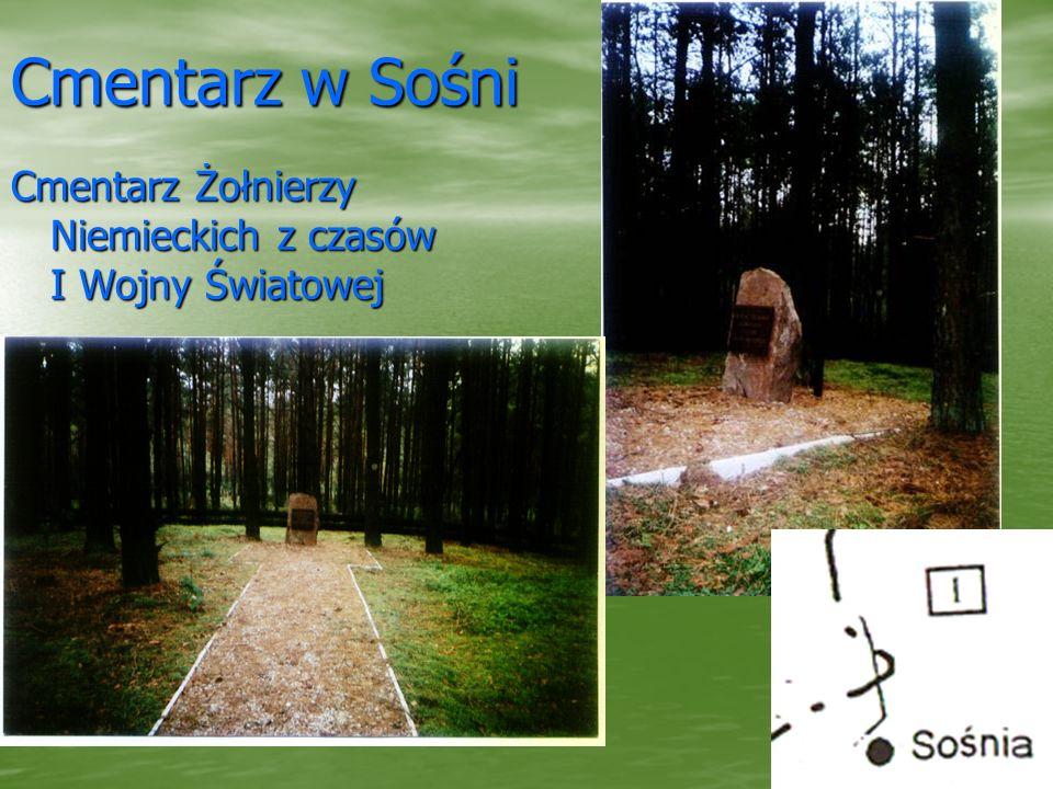 Cmentarz w Sośni Cmentarz Żołnierzy Niemieckich z czasów I Wojny Światowej