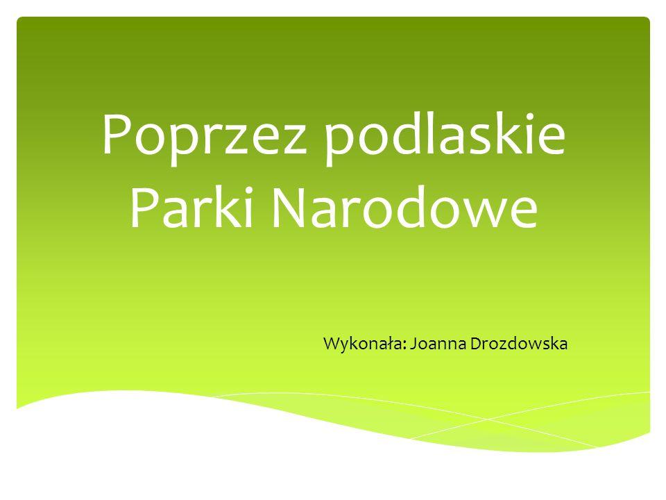 Poprzez podlaskie Parki Narodowe