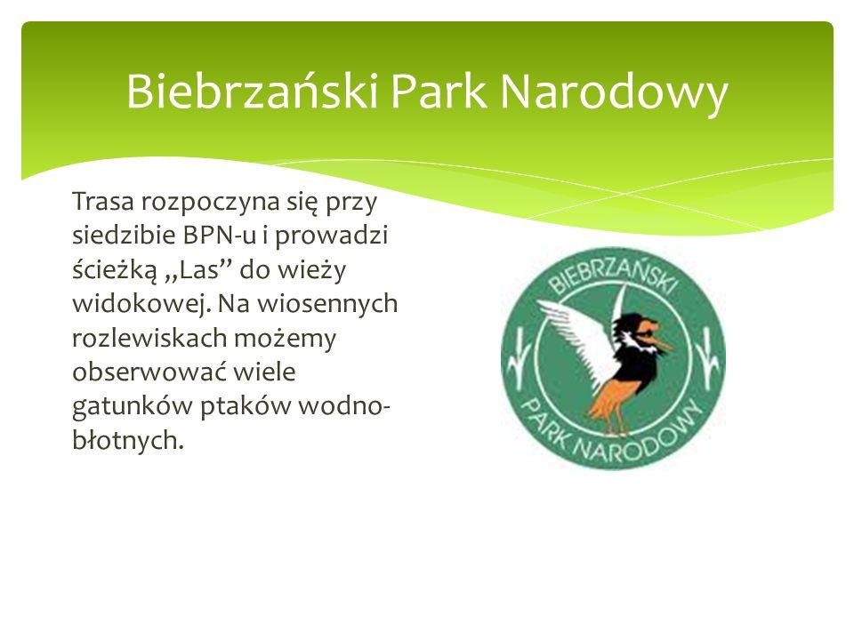 Biebrzański Park Narodowy