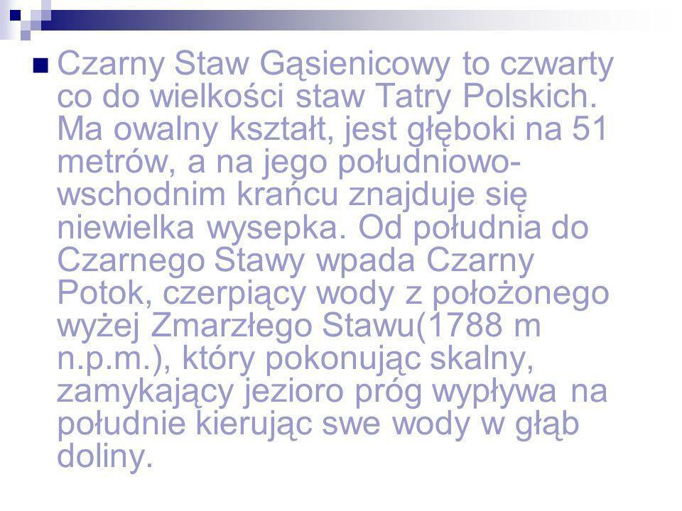 Czarny Staw Gąsienicowy to czwarty co do wielkości staw Tatry Polskich