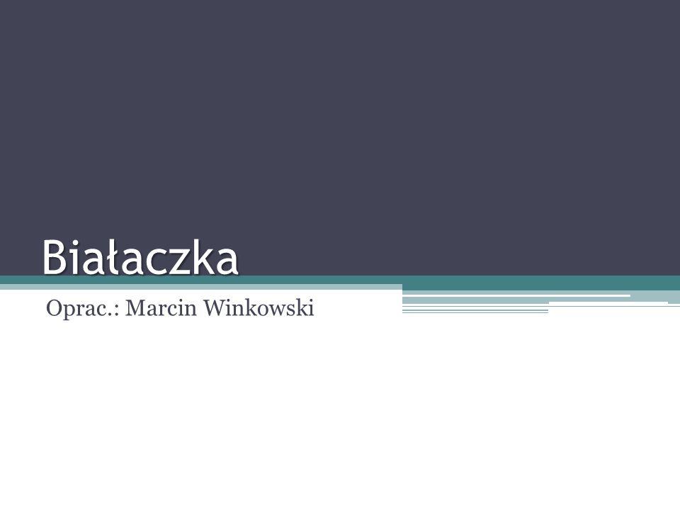 Oprac.: Marcin Winkowski