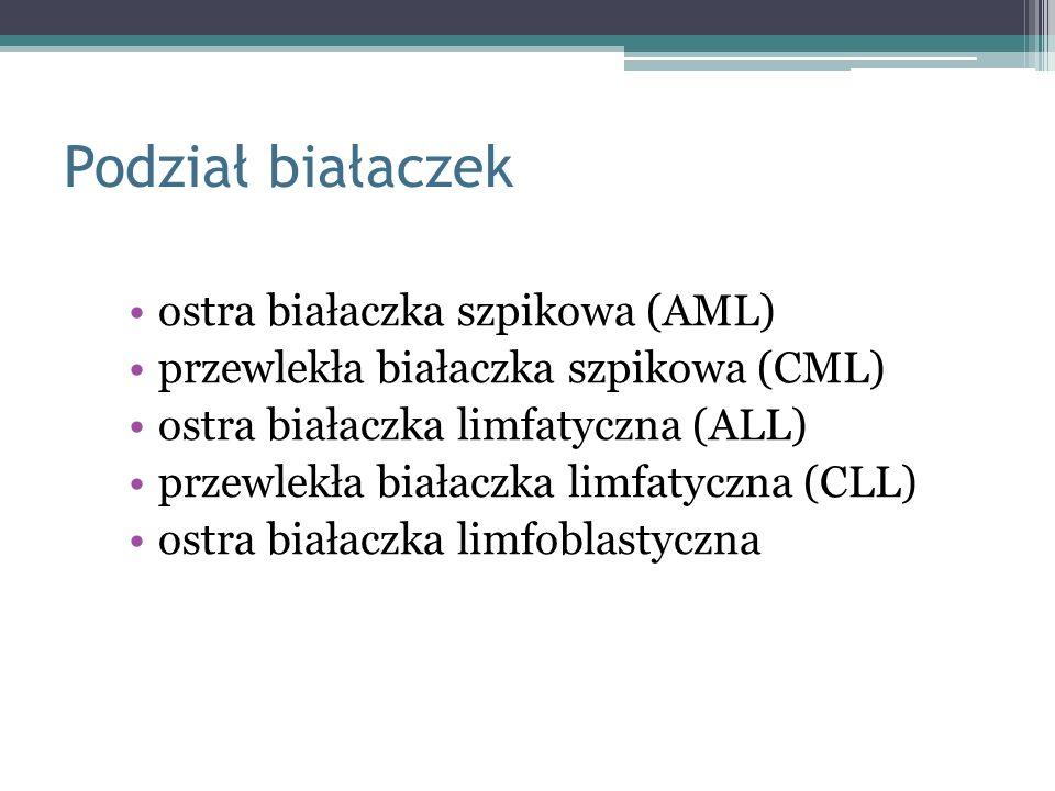 Podział białaczek ostra białaczka szpikowa (AML)