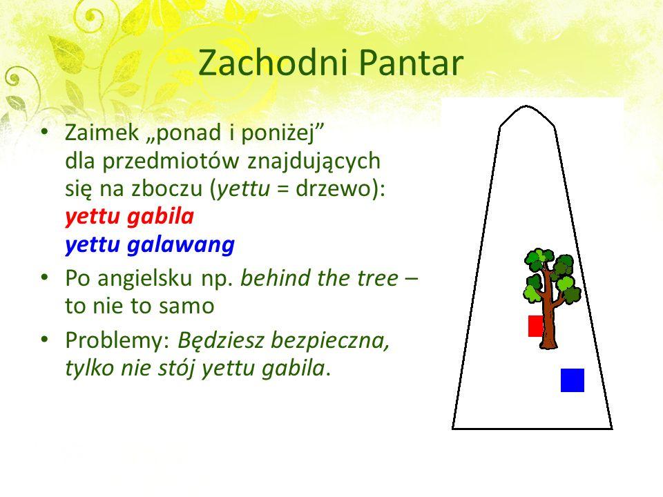 """Zachodni Pantar Zaimek """"ponad i poniżej dla przedmiotów znajdujących się na zboczu (yettu = drzewo): yettu gabila yettu galawang."""