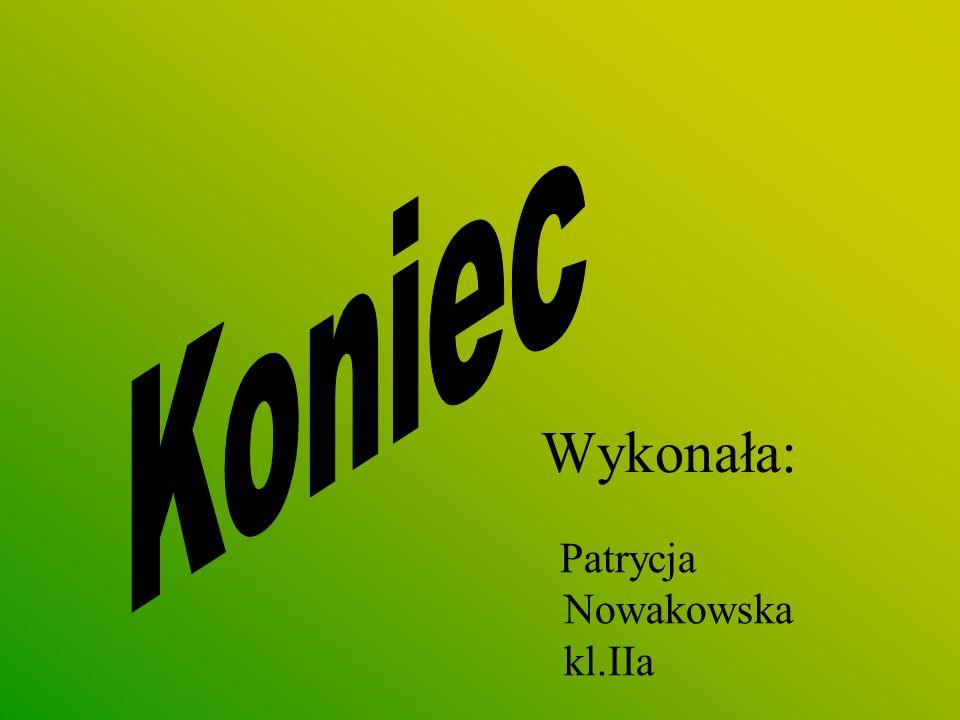 Koniec Wykonała: Patrycja Nowakowska kl.IIa