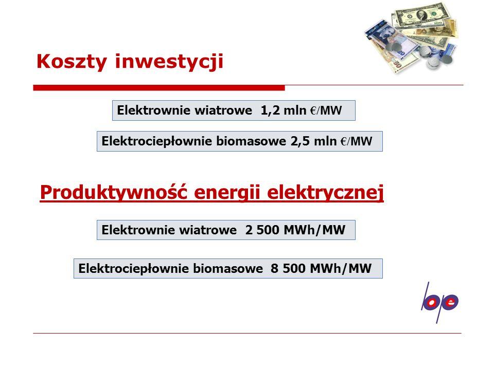 Produktywność energii elektrycznej